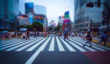 PAK93_shibuyasukuranble20130615_TP_V.jpg